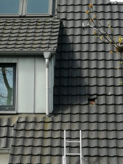 Dach Wartung
